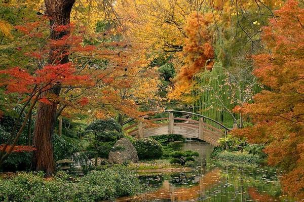 ft worth botanical gardens