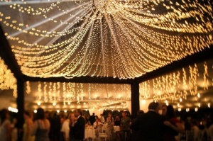 wedding_light_canopy-6033